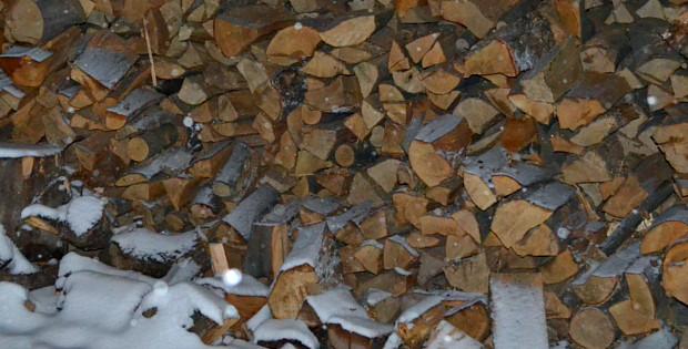 Сторожинецький лісгосп реалізував 20,5 тис. кубометрів дров