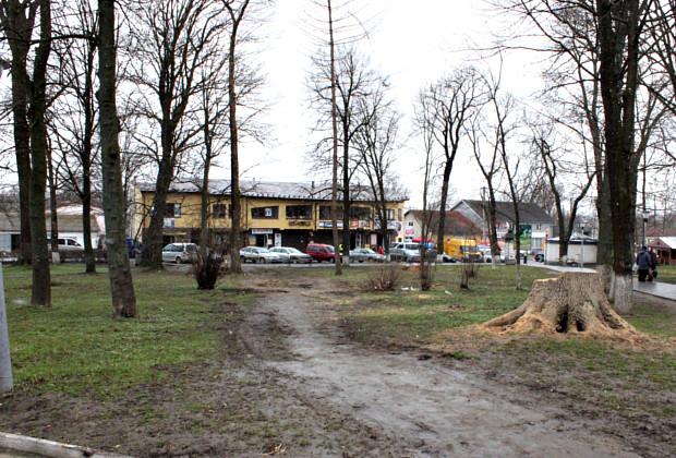 """Мер створив комісію по перевірці зрізу дерев в парку """"Юність"""""""
