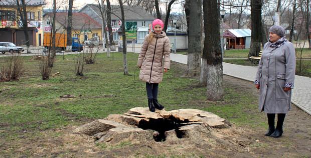 """Історія з деревами в парку """"Юність"""" завершилась?"""
