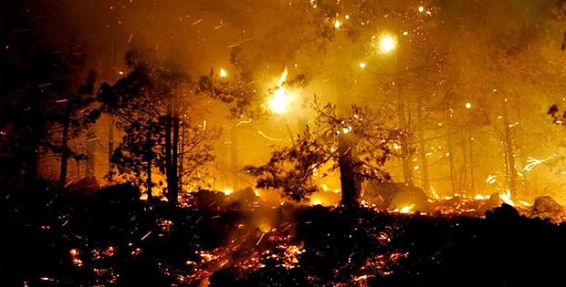 ДСНС: Увага! Пожежонебезпечний період!