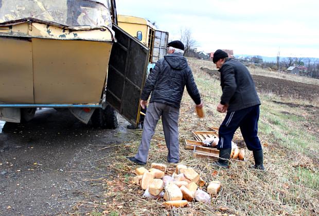 Дерево впало на хлібовоз