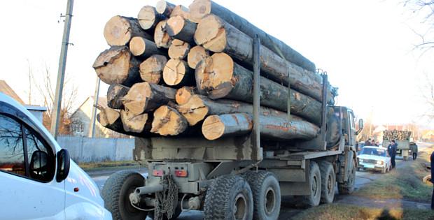В Сторожинці затримали дві вантажівки з необробленим лісом