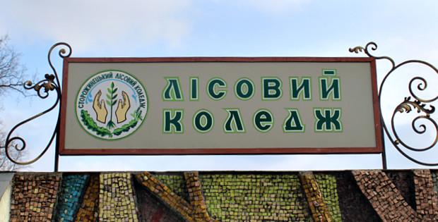 Сторожинецький лісовий коледж оголошує прийом документів