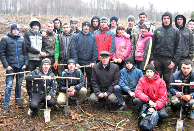 Студенти коледжу висадили шість гектарів лісу