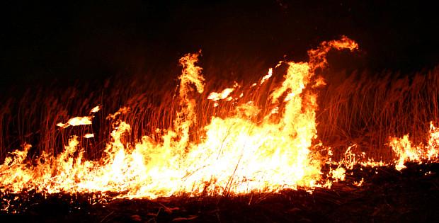 Загоряння сухої трави