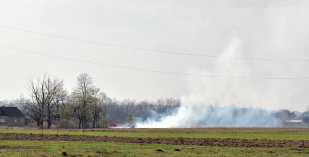 ДСНС закликає припинити спалювання сухої рослинності!