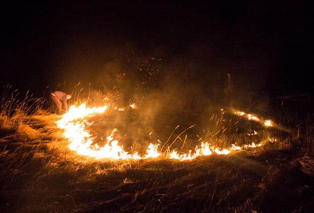 На Франківщині трапилося масштабне загорання сухої трави: вогонь розкинувся відразу на декілька гектарів площі