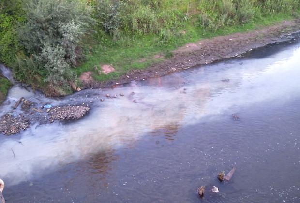 Не зовсім молочні ріки по Сіретських берегах