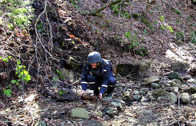 В прикарпатському лісі виявили майже два десятки смертоносних знахідок