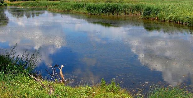 У Чудеї на ставку виявили тіло 30-річного місцевого жителя