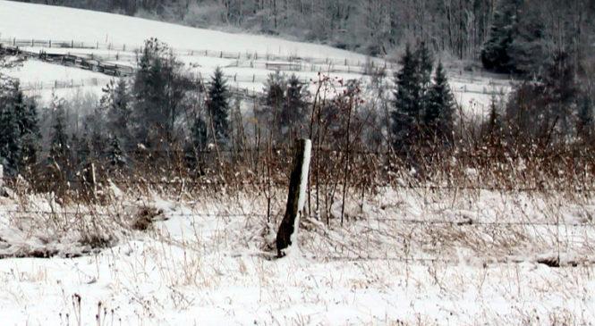 В Давидівці в снігу біля дороги місцеві жителі виявили тіло літнього чоловіка