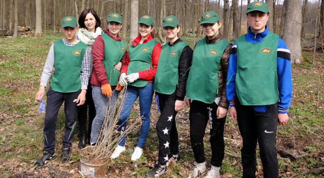 """""""Майбутнє лісу у твоїх руках"""". У Жадівському та Чудейському лісництвах школярі і студенти висадили нові дерева"""