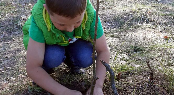 Рідні загиблого Героя Володимира Бузенка висадили на острові Хортиця дуб у пам'ять про сина