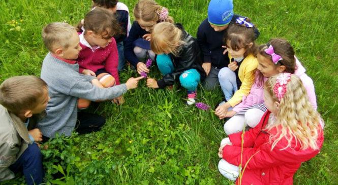 Школярі вчилися піклуватися про природне біорізноманіття