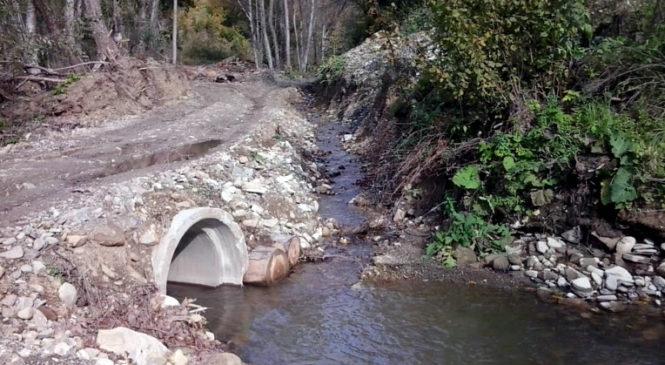 У Банилівському лісництві забезпечили тракторам і лісовозам мостові переїзди через малі річки і гірські потоки