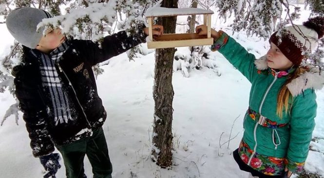 Гуртківці ЦЕНТУМу закликають допомогти зимуючим птахам