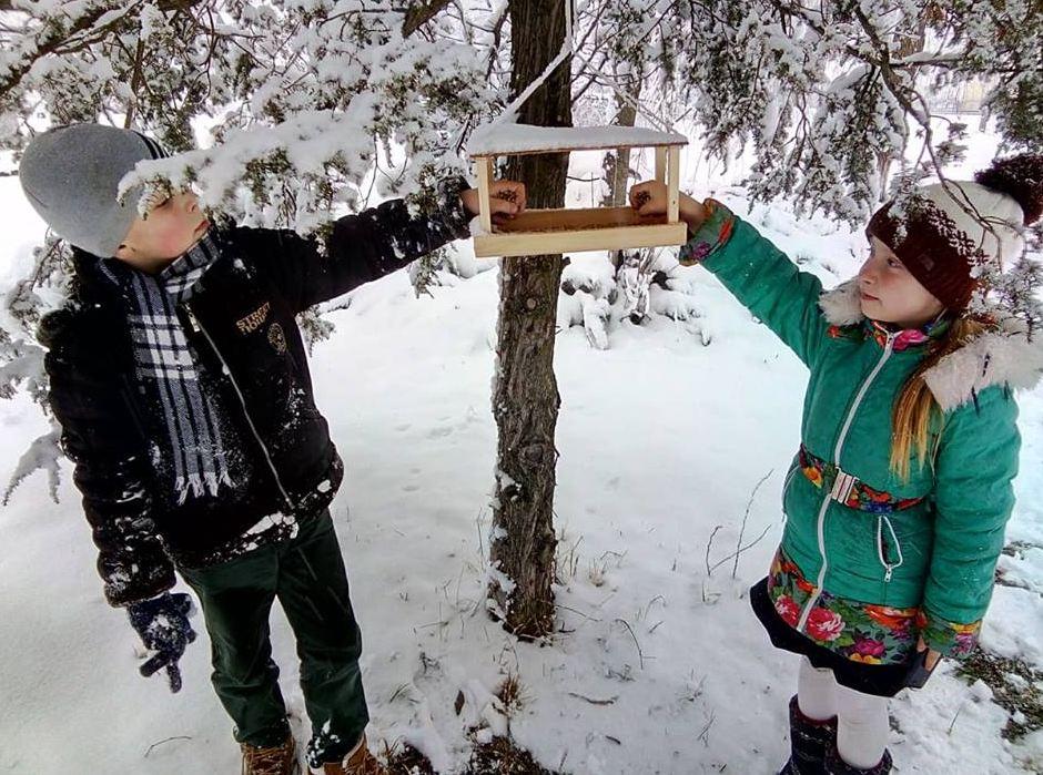 Допомога зимуючим птахам