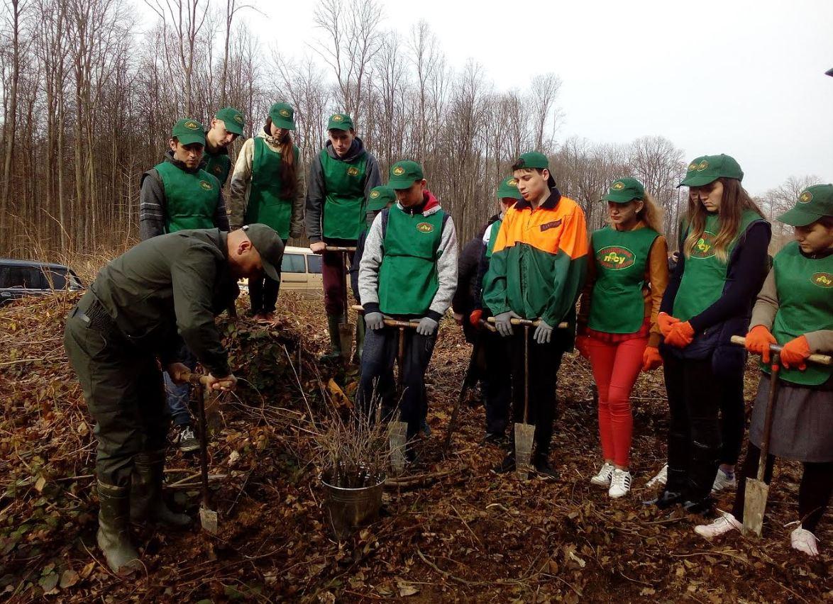 Міжнародний день лісів