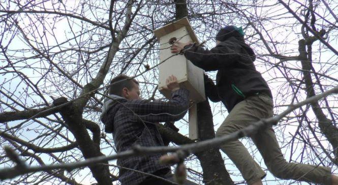 Юні лісівники готувались до зустрічі птахів