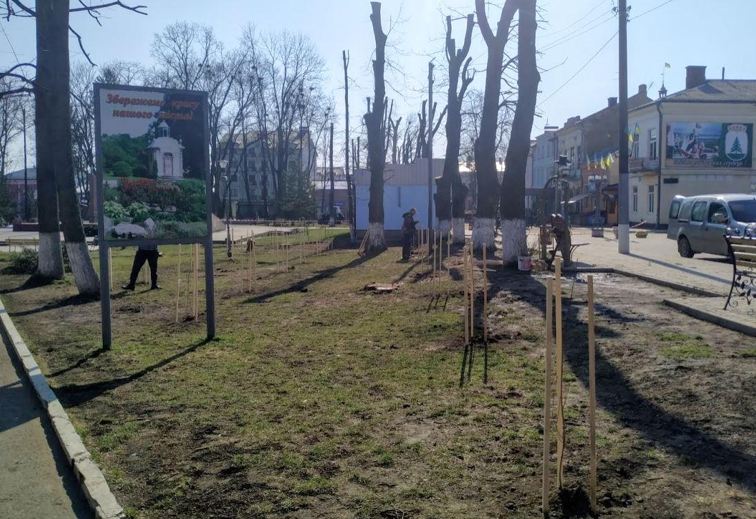Висаджування дерев